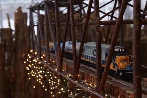 _13 RailwayGarden_VanDis_020 - Copy