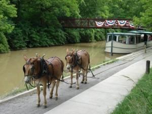 Erie Canal Volunteer