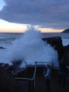 Thunder Hole credit Heather Anderson