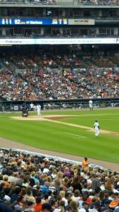 Tigers Field 1