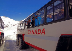 banff-national-park-bus_cvo_6185_480x340