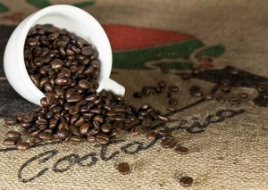 costaricacoffee_38312511_fotoliarf_2168_480x340