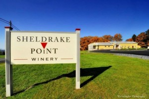 sheldrake-point-winery